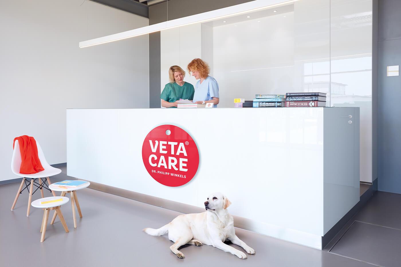 cyclos veta care praxis tierklinik marketing werbeagentur münster